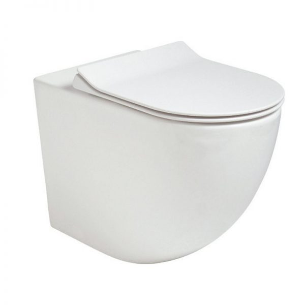 Inspire Back to Wall Toilet
